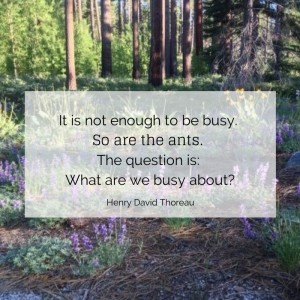 what are we busy about?
